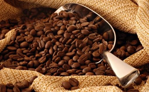 cafe_hn