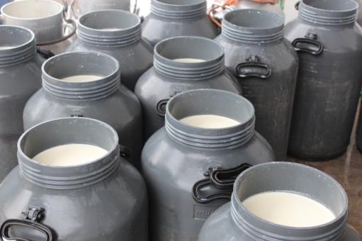 Recibo de leche planta productores de copan