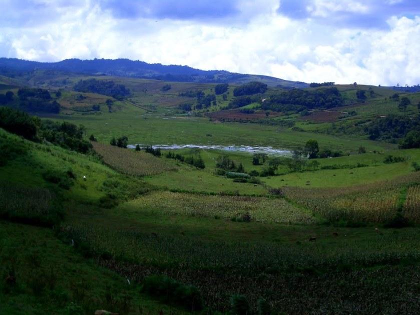 Montañas verdes en Yarula, La Paz Honduras